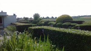 Coverbeeld Yan's Tuinen